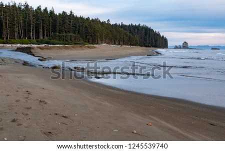 Sandy beach along the coast of the West Coast Trail on Vancouver Island, British Columbia, Canada #1245539740