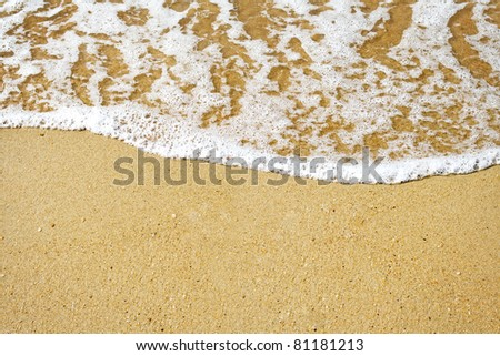sandy beach and foamy surf