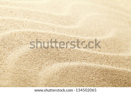 Sandy Beach Background For Summer. Sand Texture. Macro Shot. Copy Space