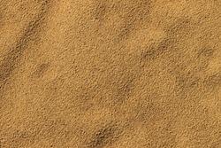 Sandy beach. Detailed sand texture