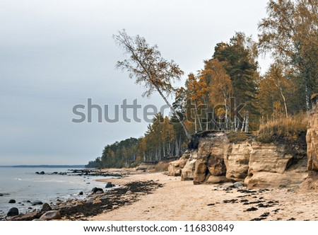 Sandy beach of Baltic Sea at the countryside of Vidzeme district, Latvia, Europe