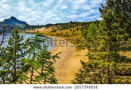 Sandy beach on a forest lake. Pine forest lake beach. Lake beach in pine forest. Forest lake view
