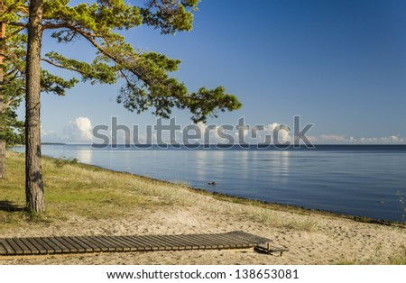 Sandy beach on the Baltic Sea at summer, Latvia, Europe