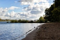 Sandy beach on the river rhine in beautiful summer, autumn weather in Wesseling - Germany between Cologne and Bonn