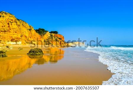 Sandy beach on the seashore. Sea sandy beach scene. Sandy beach landscape
