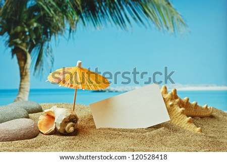 sandy beach on the tropical coast