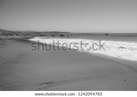 Sandy beach with ocean waves rolling onto the shoreline. Black and white. #1242094783