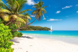 Sandy beach with palm trees and a sailing boat in the turquoise sea on Paradise island.