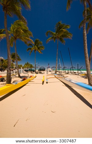 Sandy beach with palm trees and boats