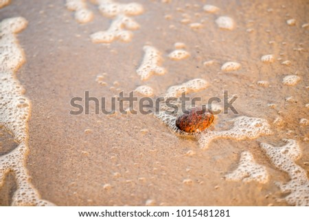 sandy beach with pebble and spray of the surf #1015481281