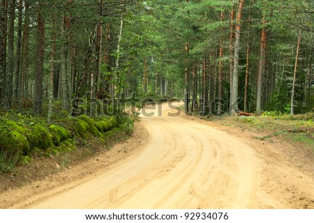 Sandy country road in a wood