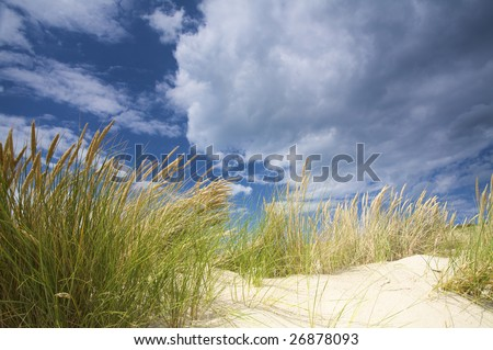Sandy dunes near the sea in Holland