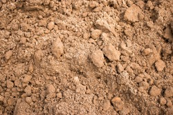 Sandy loam soil background. Crumbly soil abstract background texture for pattern, graphic design, print, abstract web design backgrounds, wallpaper or banner template
