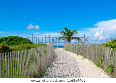 Sandy path leading to the beach in South Beach, Miami