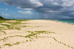 Sandy Point National Wildlife Refuge beach, St. Croix, US Virgin Islands.