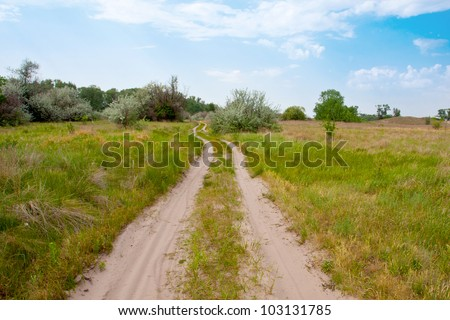 sandy road in steppe in summer day