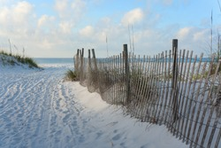 Sandy road through the dunes to the beach, bordered by twisting wooden sand fence in the very early morning.