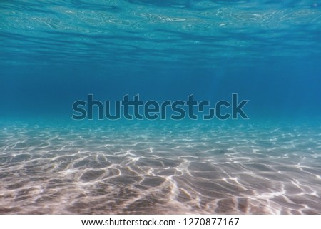 Sandy sea bottom Underwater background #1270877167