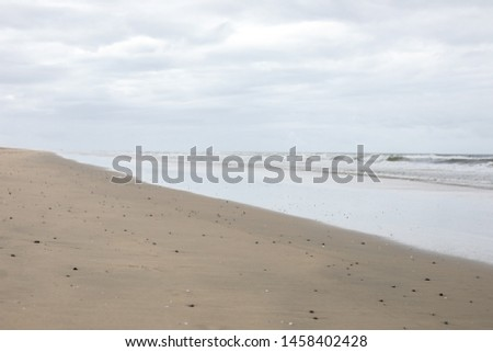 Sandy shoreline at low tide under a cloudy sky, in a natural seascape