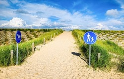 Sandy trail with road signs. Trail on sand with road signs. Sand trail with road signs