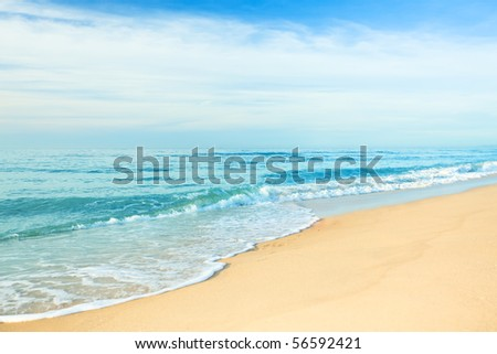 Sandy tropical beach in summer sunny day
