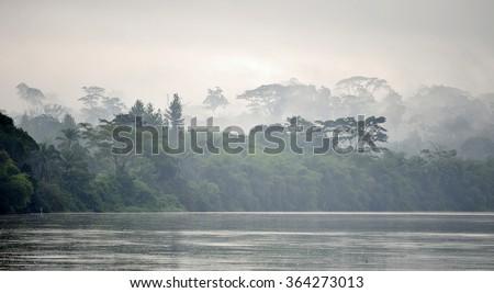 Sangha River. Morning fog on the African river Sangha. Congo. Сток-фото ©