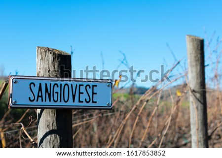 Sangiovese wine grape variety outdoor sign on wooden vertical end post in vineyard