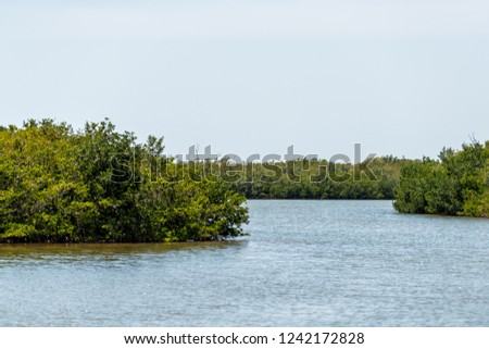 Sanibel Island, USA Bowman's beach with landscape view of Bayou from bridge, nobody, river bay