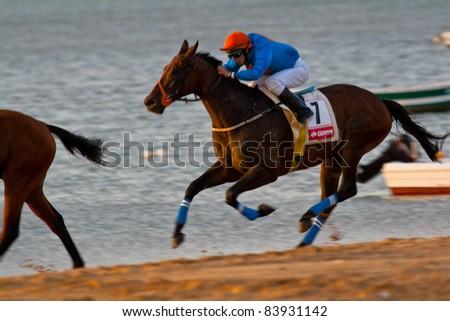 SANLUCAR DE BARRAMEDA, CADIZ, SPAIN - AUGUST 07: Unidentified rider race horses on Sanlucar de Barrameda beach on August 28, 2008 in Sanlucar de Barrameda, Cadiz, Spain.