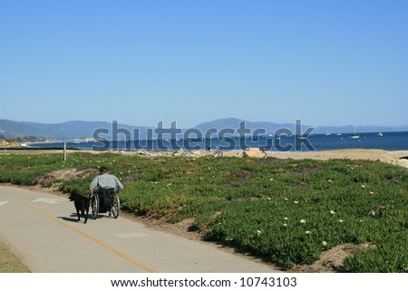 Santa Barbara, California beach front and Pacific Ocean, with a man and dog