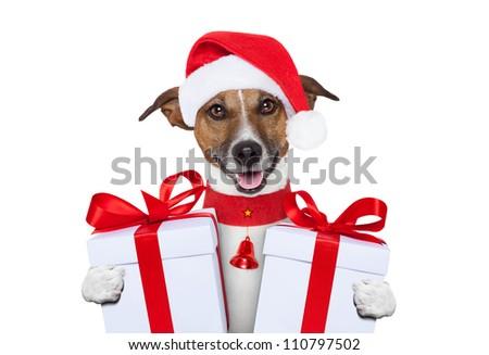 santa christmas dog with gifts