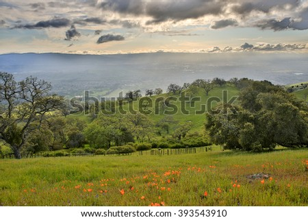 Shutterstock Santa Clara Valley from Joseph D. Grant Country Park, Santa Clara County, California, USA. Silicon Valley from Mount Hamilton in springtime, filled with california poppies and oak woodland.
