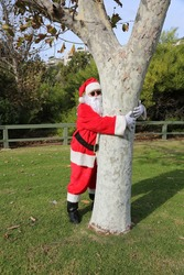 Santa Claus looks around and climbs on and in a tree in a park