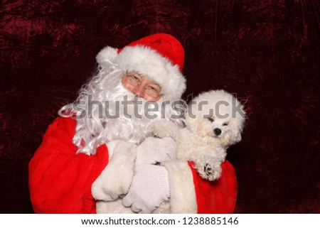 Santa Claus. Santa Claus. Santa Claus poses with a Dog for a Christmas Photo Shoot. Gold Sequin background. Christmas holiday images. Dogs love Santa.  #1238885146