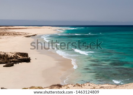 Santa Monica beach in Boa Vista Cabo Verde #1463124809