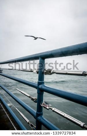 Santa Monica Pier #1339727834