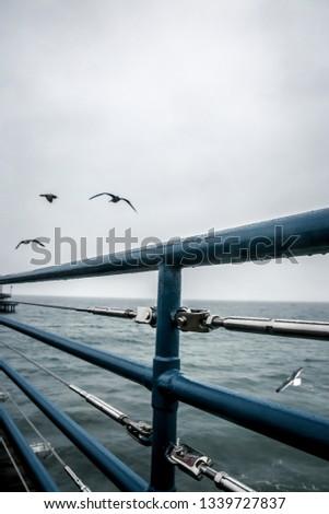 Santa Monica Pier #1339727837