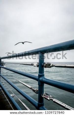 Santa Monica Pier #1339727840