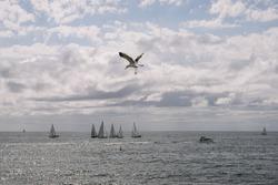 Santa Monica, USA - October 5, 2015: Sailboats Sailing On Sea Against Cloud Sky