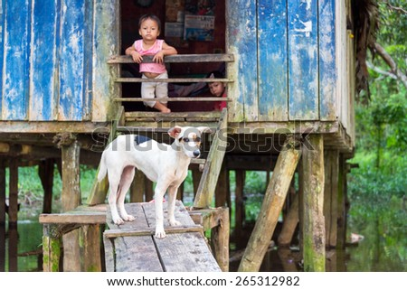 SANTA RITA, PERU - MARCH 21: Dog guarding the entrance to a house in the village of Santa Rita, Peru on March 21, 2015.  Santa Rita is a community deep inside the Amazon Rainforest.