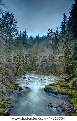Santiam River, Oregon Cascades, winter, fast running water