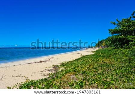Santo Andre beach, Santa Cruz Cabralia, Bahia, Brazil. Foto stock ©