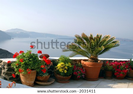 santorini greek islands greece flowers in pots on patio over sea
