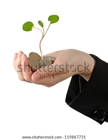 sapling growing from pile of coins