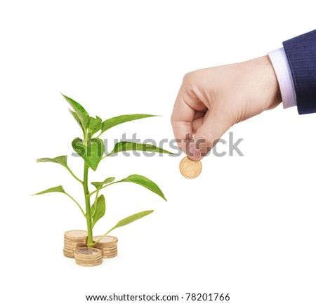 Sapling growing from pile of coins and hand holding a coin isolated on white background