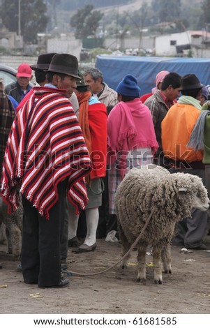 SAQISILI, ECUADOR - AUGUST 5: A farmer in traditional clothes sells his sheep in the cattle market on August 5, 2010 in SAQISILI, Ecuador. This is the biggest Indian market of South America, - stock photo