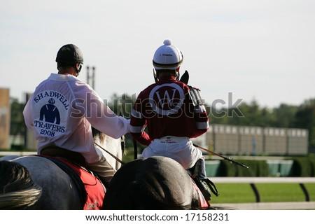 Gelding The Ponyboy Slave | Personal Blog