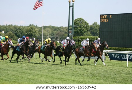 SARATOGA SPRINGS - August 18: The Field Heads Down the Front Stretch the First Time in the Fifth Race August 18, 2008 in Saratoga Springs, NY.