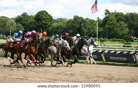 SARATOGA SPRINGS - August 9: The Field Heads down the Stretch for the First Time in the Solomon Northup Stakes August 9, 2008 in Saratoga Springs, NY.