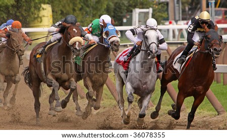 SARATOGA SPRINGS, NY - AUG 28: Thoroughbreds head down the stretch in the 6th race at Saratoga Race Course, Saratoga Springs, NY, on Aug 28, 2009. Eventual winner is Grasberg (Ramon Dominguez up, #6).
